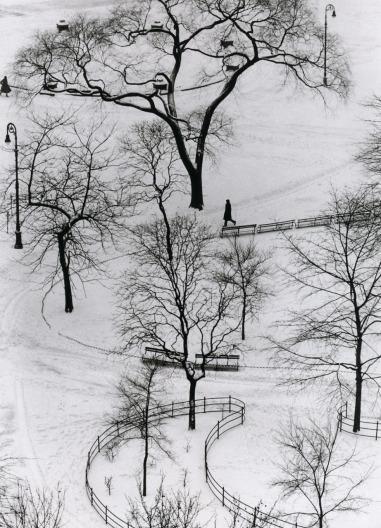kertesz ws snow